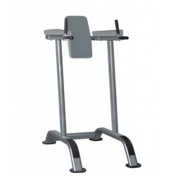 IT7010 Impulse Verical Knee Raise