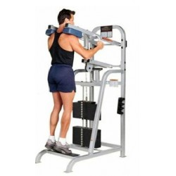 Life Fitness PRO Standing Calf