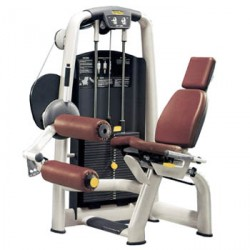 Technogym Selection - Leg Curl