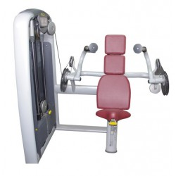 Technogym Selection - Arm Extension