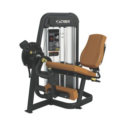Cybex Eagle Leg Extension