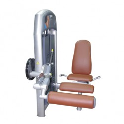 Precor Infinity Leg Extension